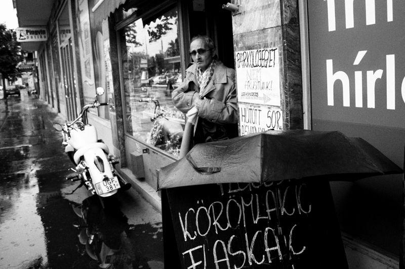 szeged, kölcsey, utca, man, shop
