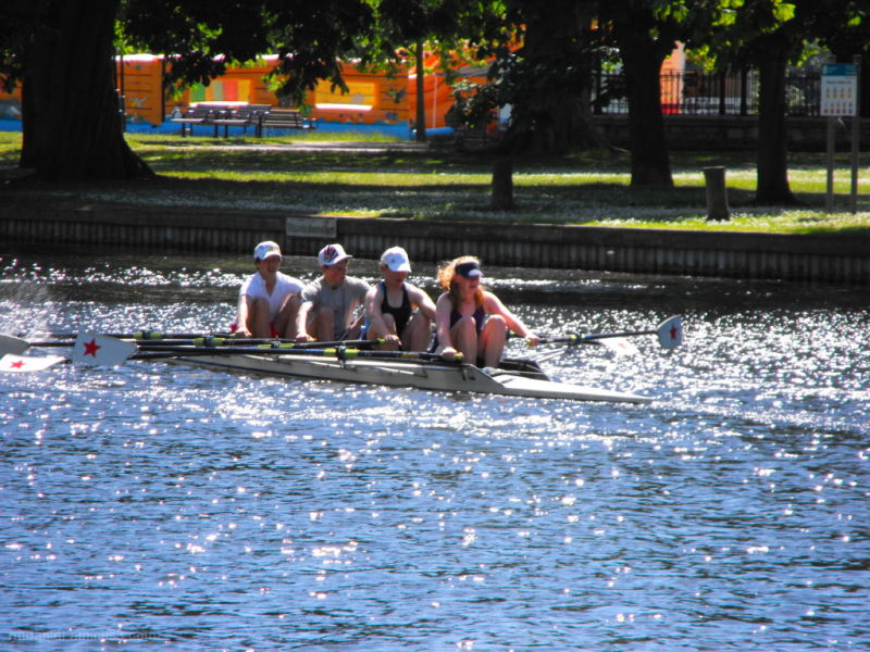 rowers on the river ouse