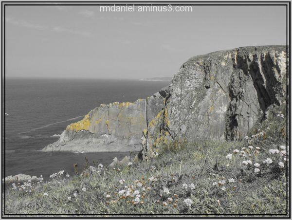 Baggie Point Croyde Bay North Devon-1