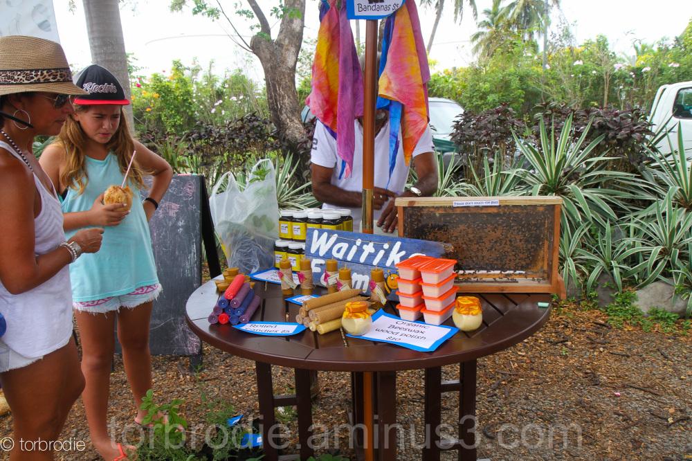vuda market, waitika farm, brodieadventures