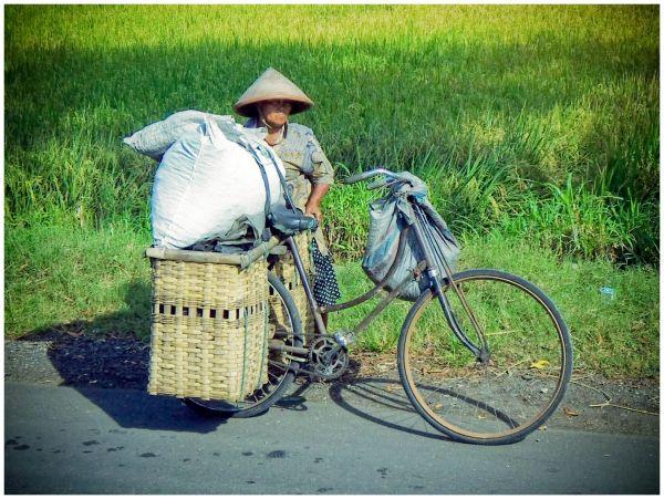 traditional farmer