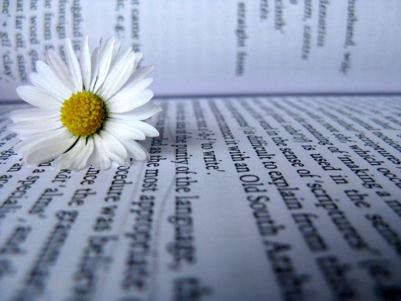 Parole come fiori