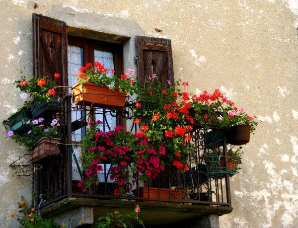 An happy balcony