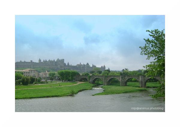 Au loin, la cité de Carcassonne