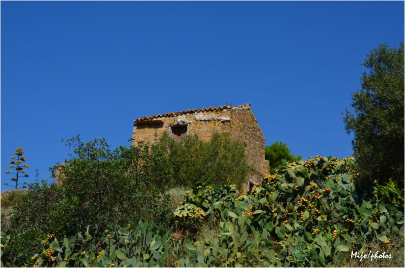 Sicile /8 : Agrigente, le jardin de la Kolymbetra