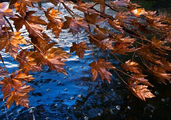 Hampton leaves