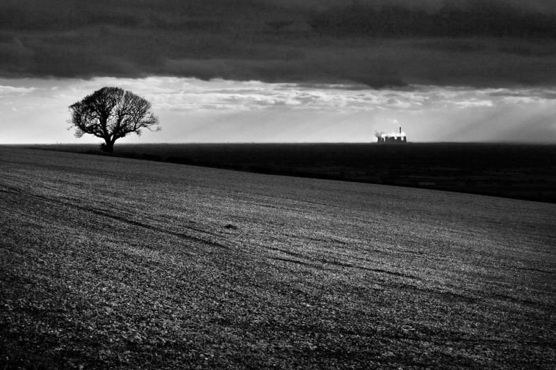 wolds view 2