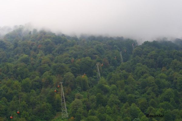 Namak Abrud - North of Iran - in jungle - 7