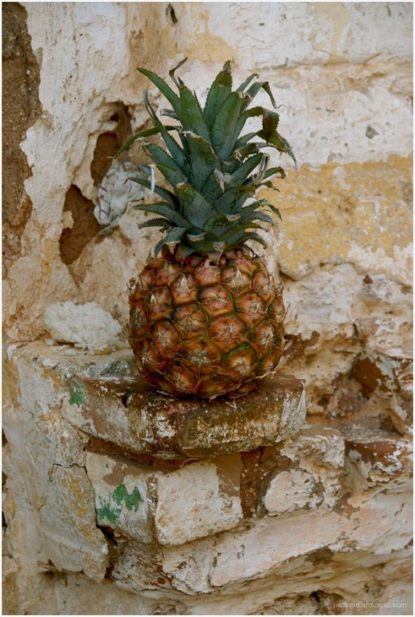 Nature morte à l'ananas