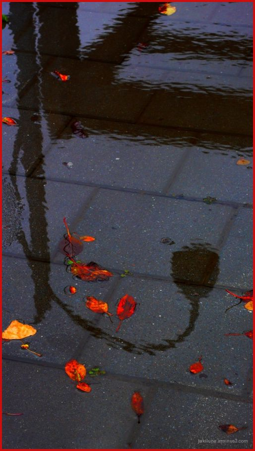 petite pluie automnale