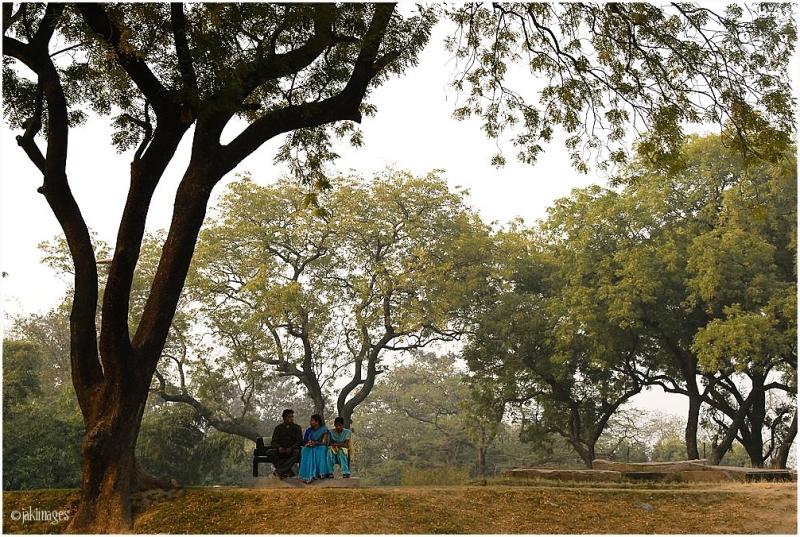 Dans un parc de Sarnat ( Inde)