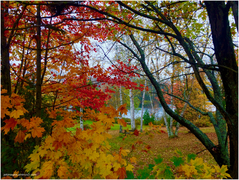 Les couleurs du Québec