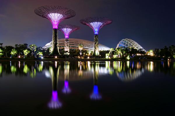 marina bay gardens singapore super trees