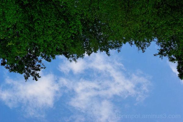 Green - Blue