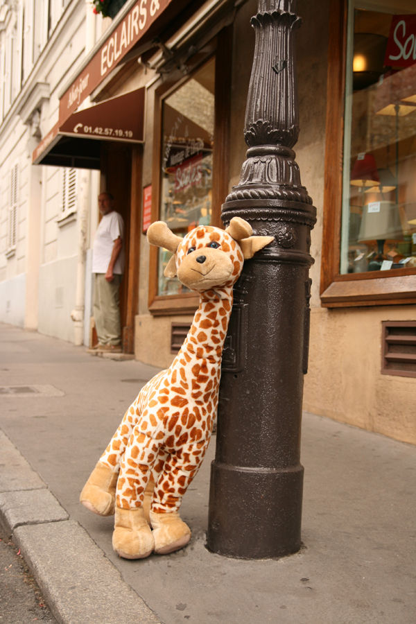 girafe city ville paris