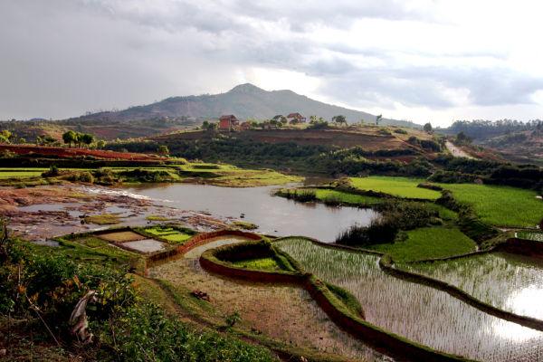 Back to Malagasy / De retour à Madagascar