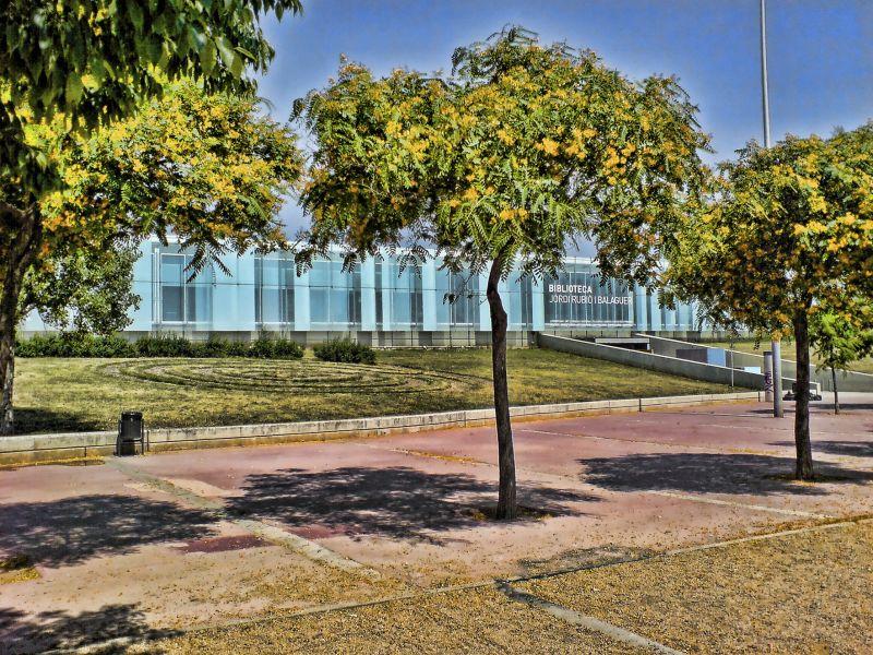Biblioteca Jordi Rubió i Balaguer