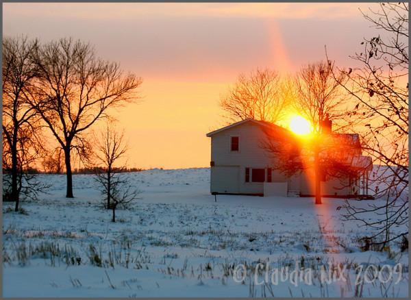 Winter Sun: Day 214