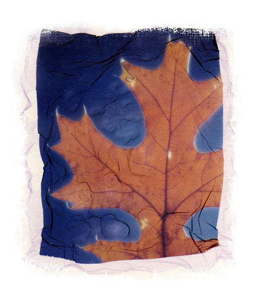 Leaf  Emulsion