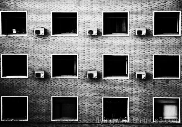 Twelve Windows