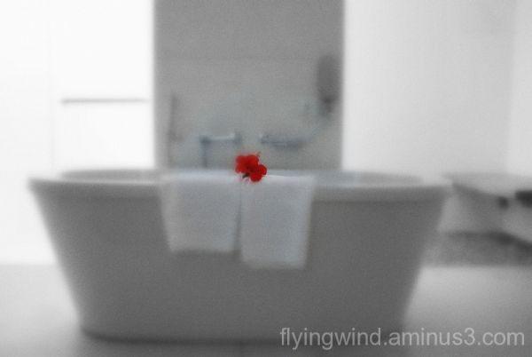 Flower's function