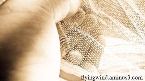 Slender net