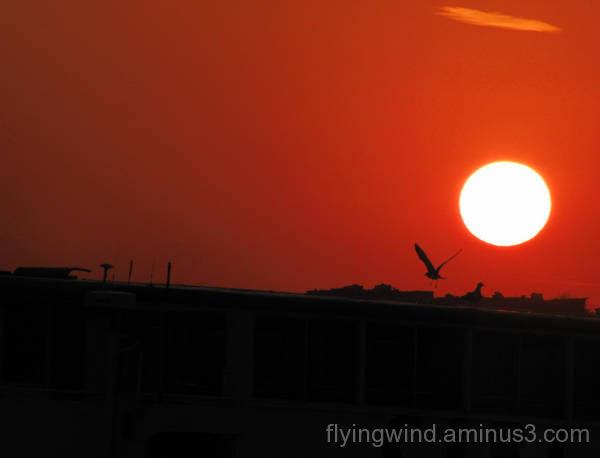 Flying in sunburst