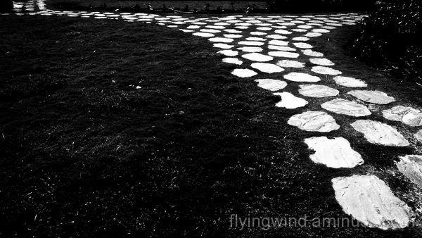 paveway