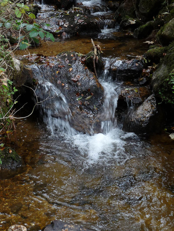 Le chant de l'eau