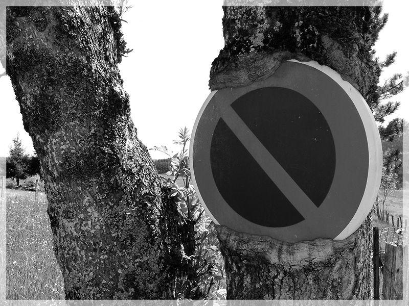 Indigestion : blocage des voies naturelles