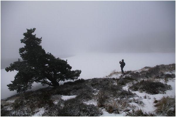 Photographe givrée sur sorbet nature & sucre glace