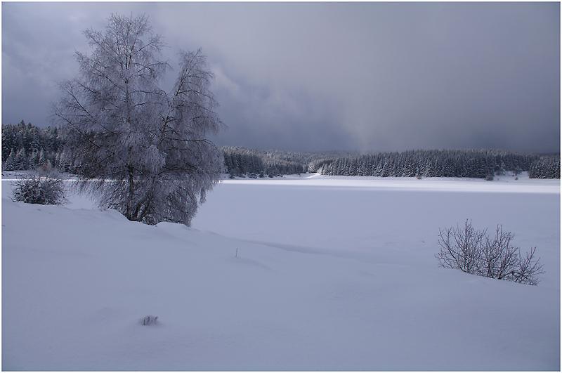 Biographie de l'hiver
