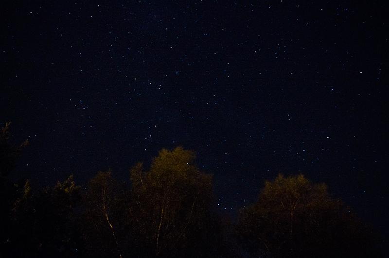 La nuit des étoiles filantes