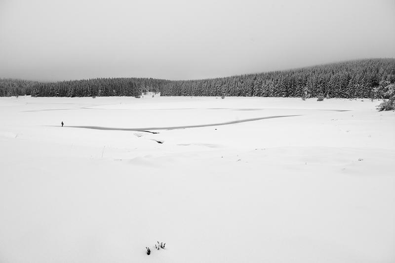 Solitude blanche
