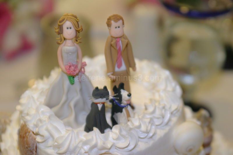 bride groom and the pets unique cake