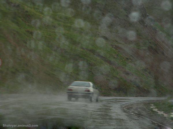Rainy (2)
