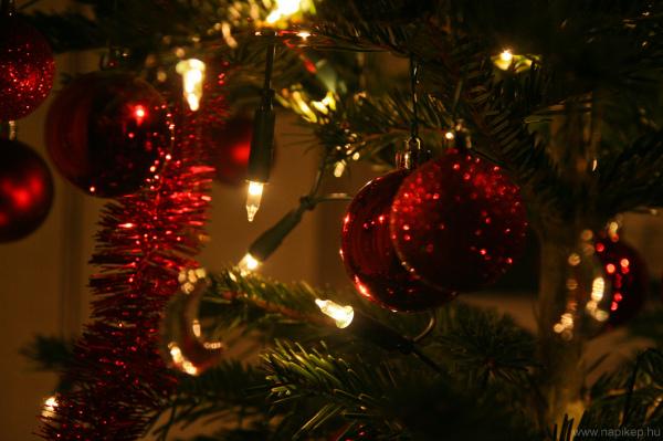 Merry Christmas! (-: