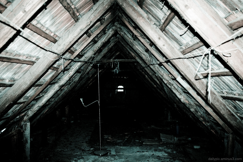 beams on the roof