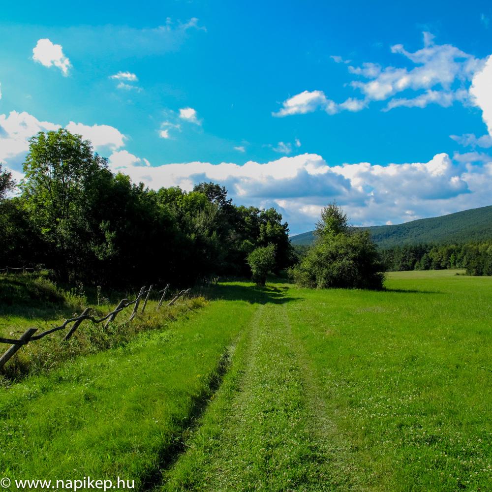 road to Dobogó-kő