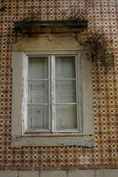windows with no purpose