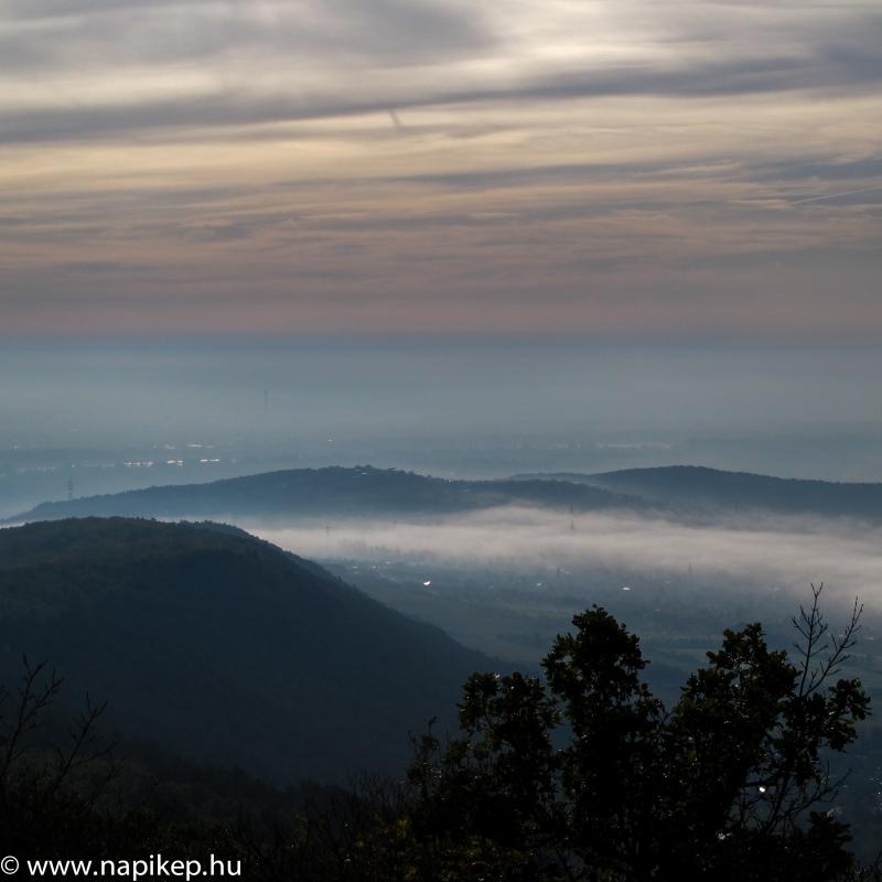 foggy morning I.
