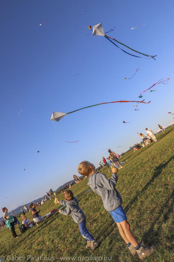 paperkite festival II