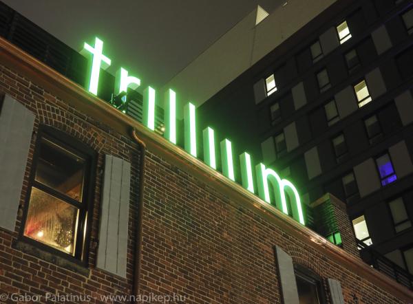 trillium beers