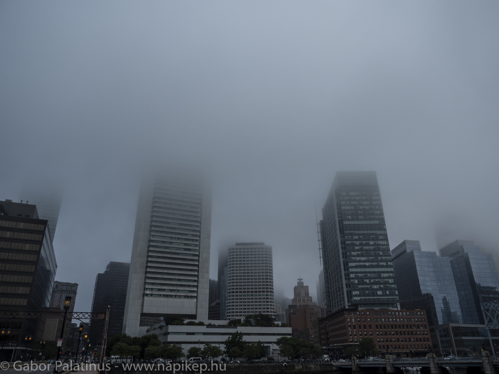 foggy Boston morning