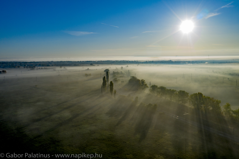 foggy morning series II.