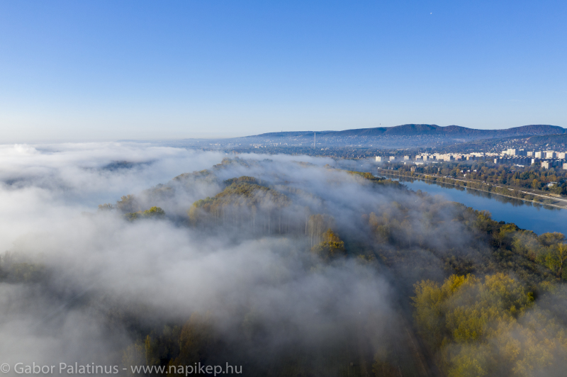 foggy morning series IV.
