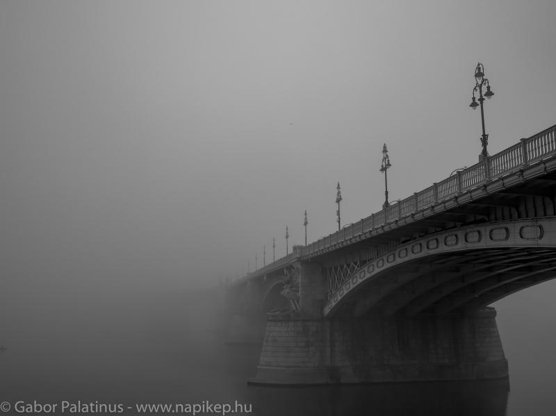 Margaret bridge hiding in the morning fog II