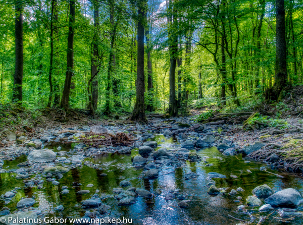 Bükkös brook in HDR II.