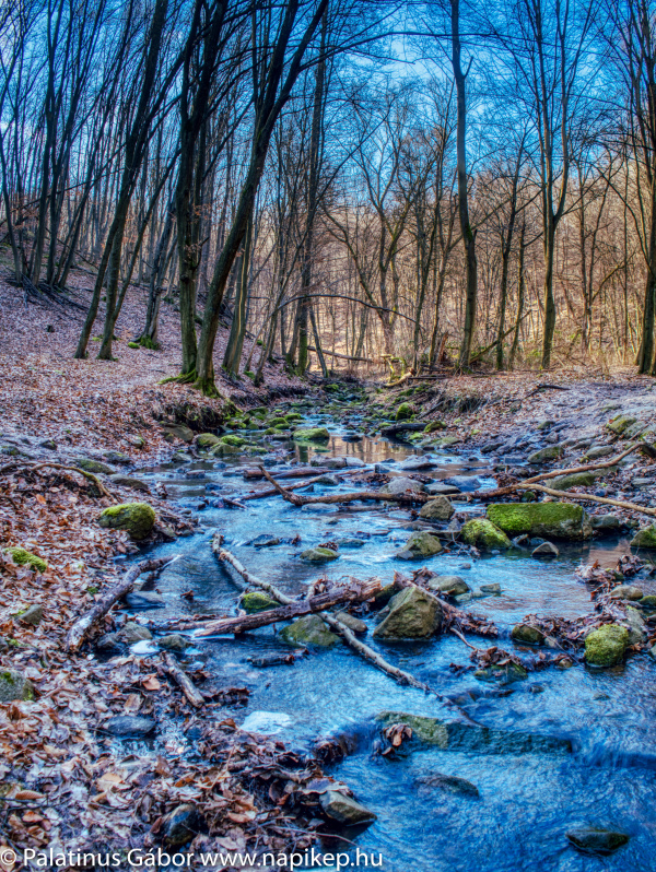 brook in HDR