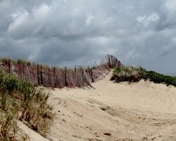 cape cod, beach, sand duens